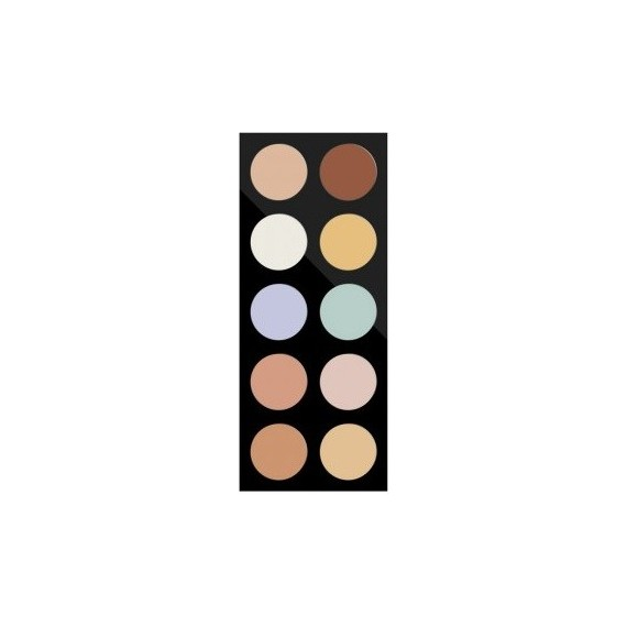 Correcting Palette- Pierre Rene Professional
